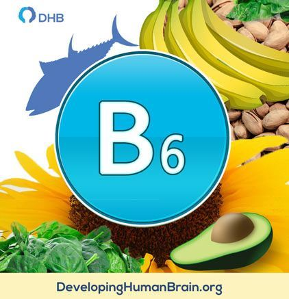 B6 vitamin for memory