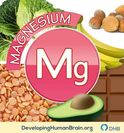 magnesium for brain