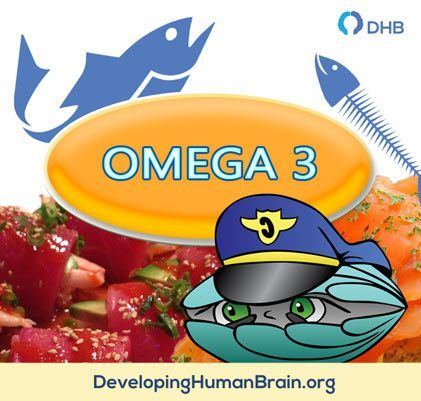 omega 3 for the brain