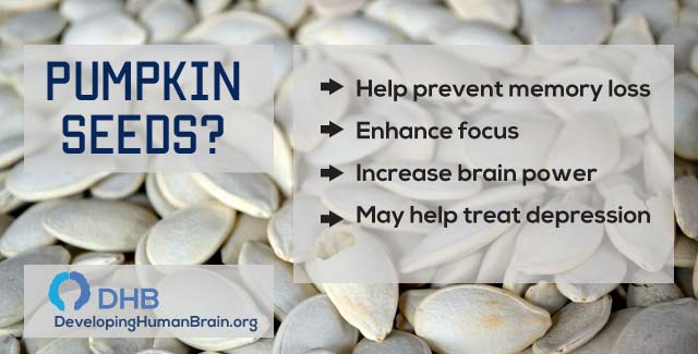 pumpkin seeds as brain food