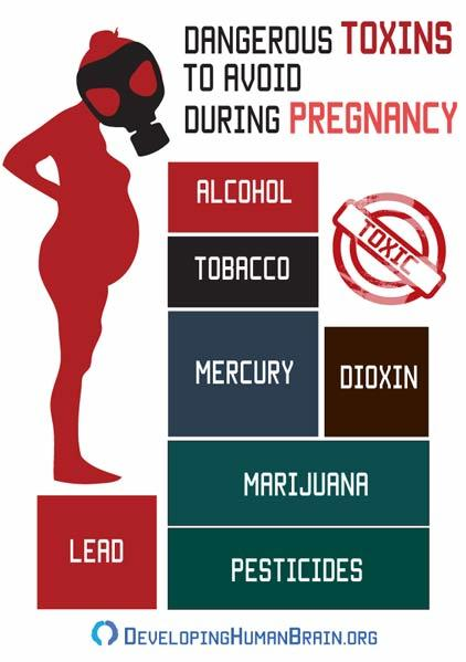 toxins during pregnancy