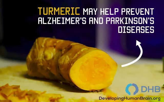 brain food turmeric