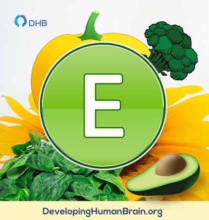 vitamin for memory
