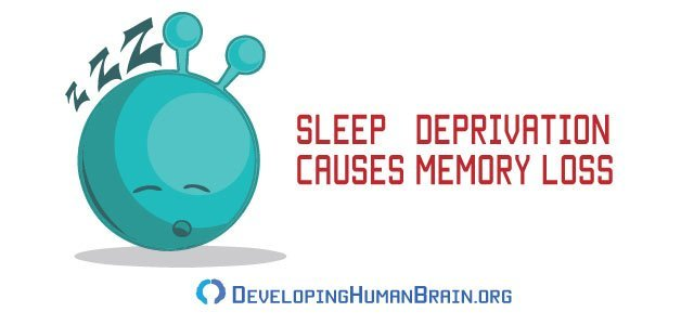 sleep memory loss