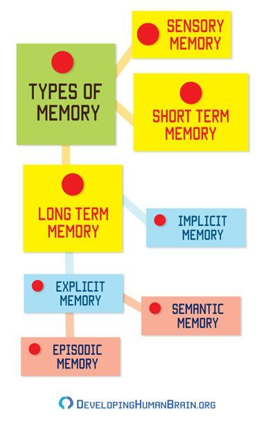 memory types infographic