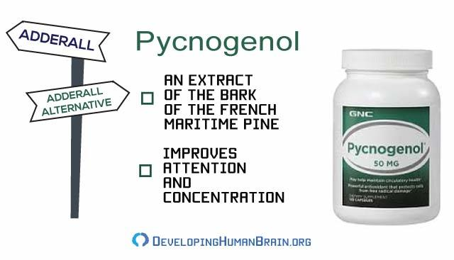 pycnogenol adderall alternatives