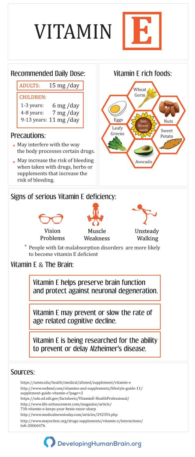 vitamin e brain health infographic