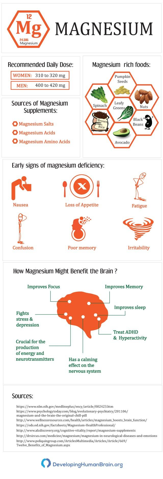 magnesium for your brain infographic