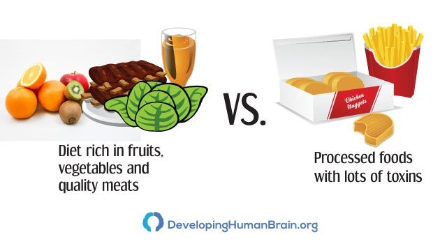 diet for brain health