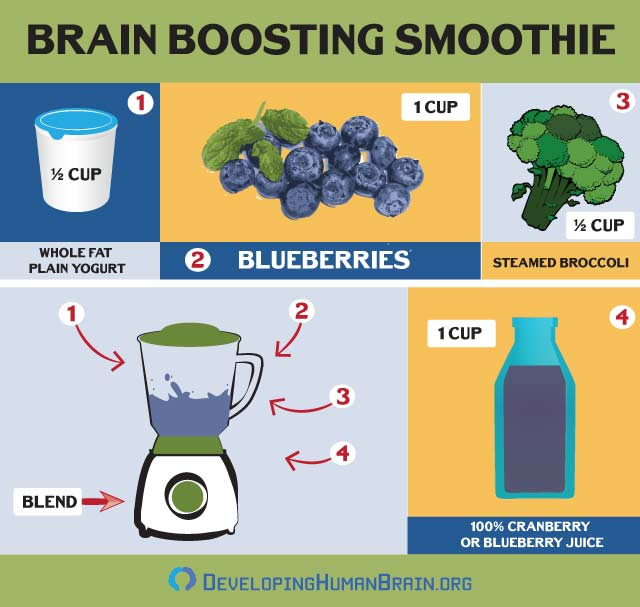 blueberry brain boost smoothie recipe infographic