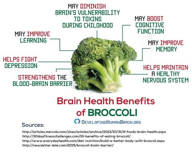 broccoli for brain infographic