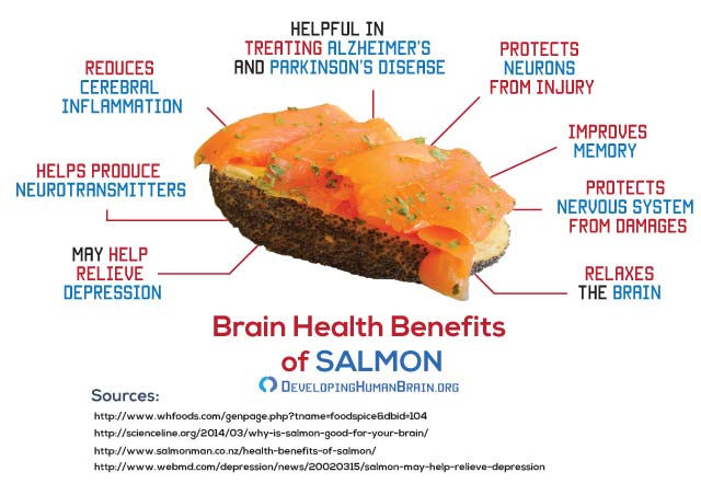 salmon for brain infigraphic