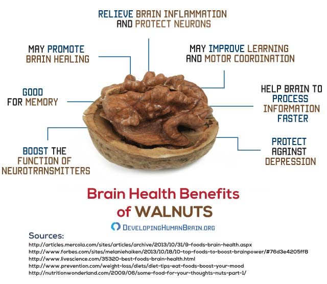 walnuts for brain health infographic
