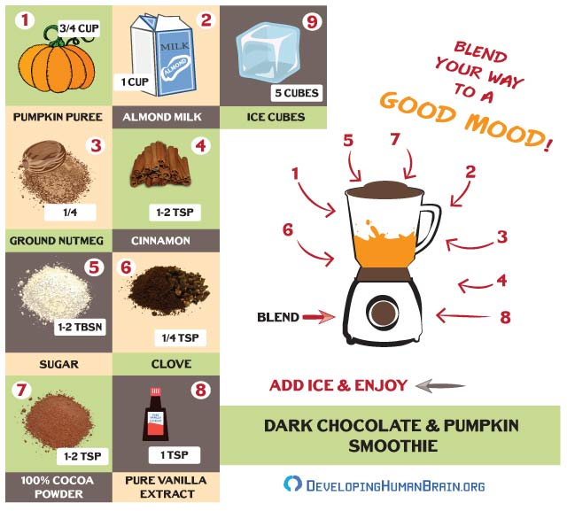 brain smoothie recipe dark chocolate infographic
