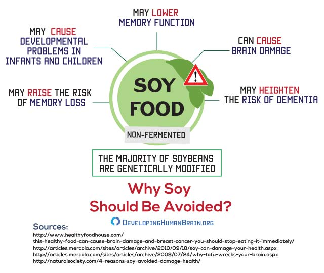 soy dangers for brain infographic