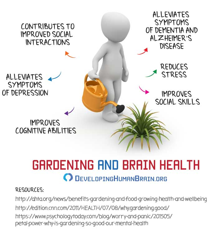 gardening for the brain infographic