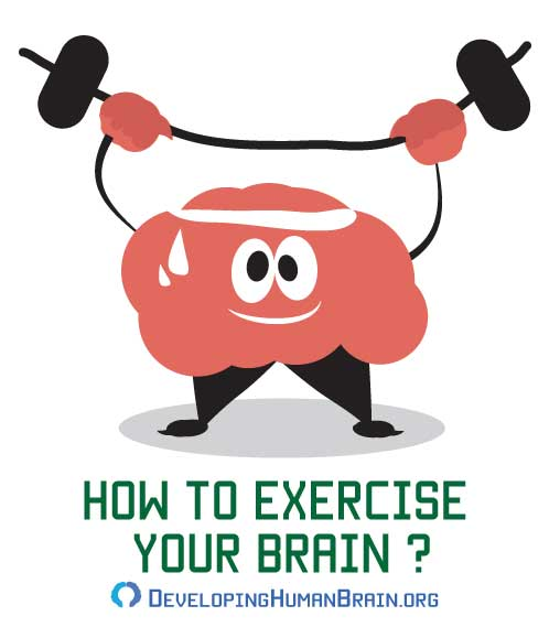 how to exercise your brain