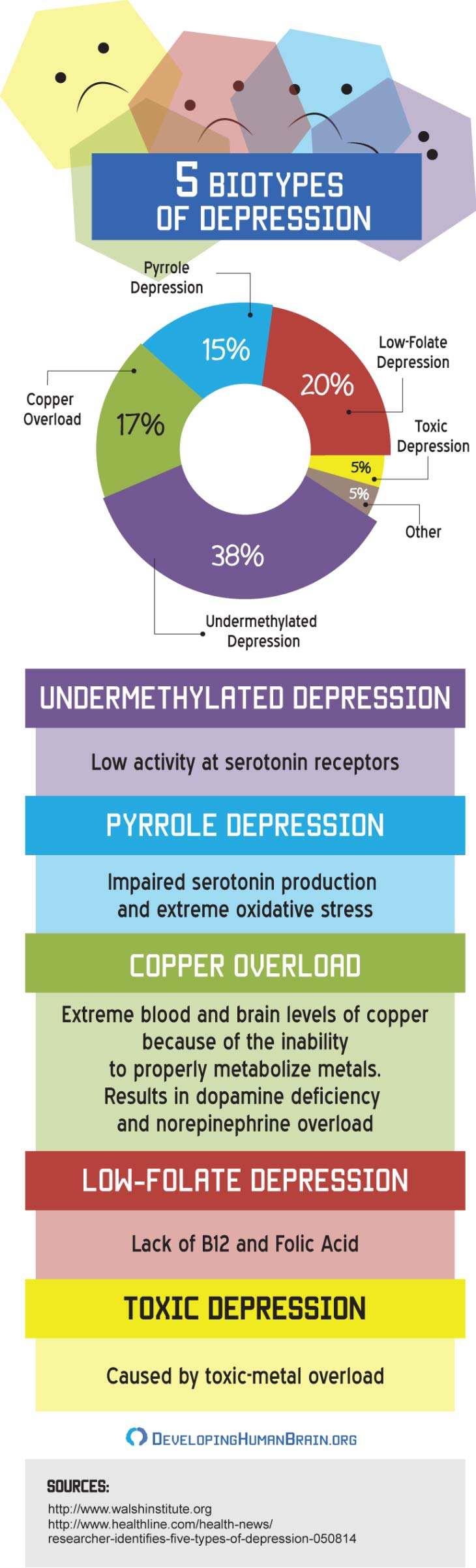 five biotypes of depression infographic