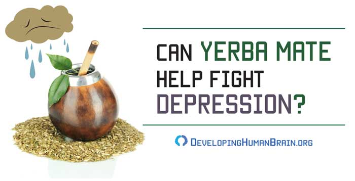 yerba mate for depression and anxiety