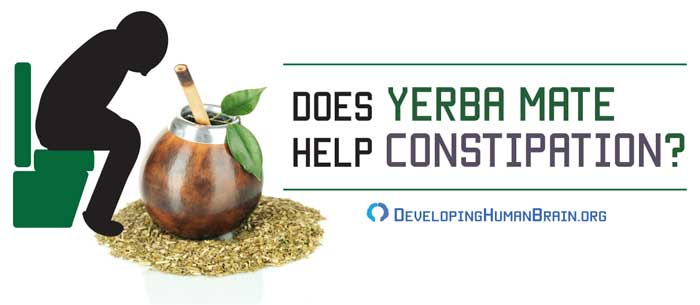 yerba mate for constipation