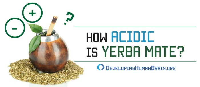 yerba mate acidic