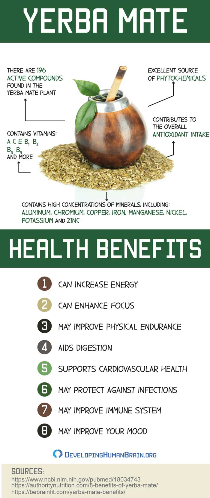 yerba mate health benefits infographic