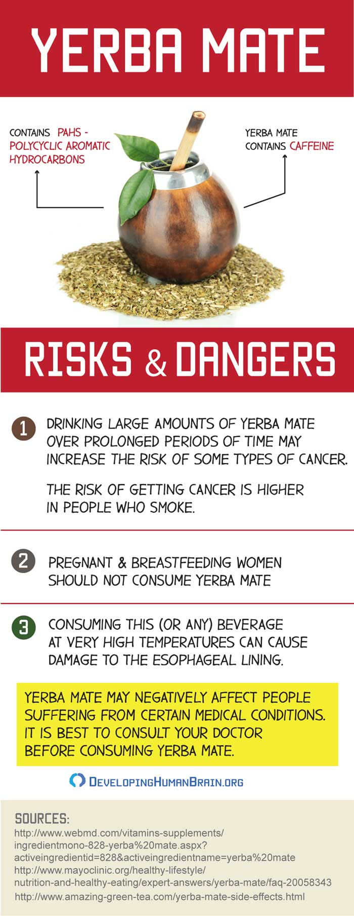 yerba mate dangers infographic