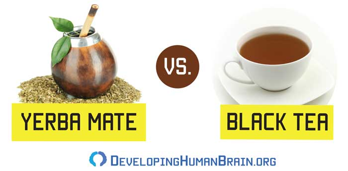 yerba mate vs black tea