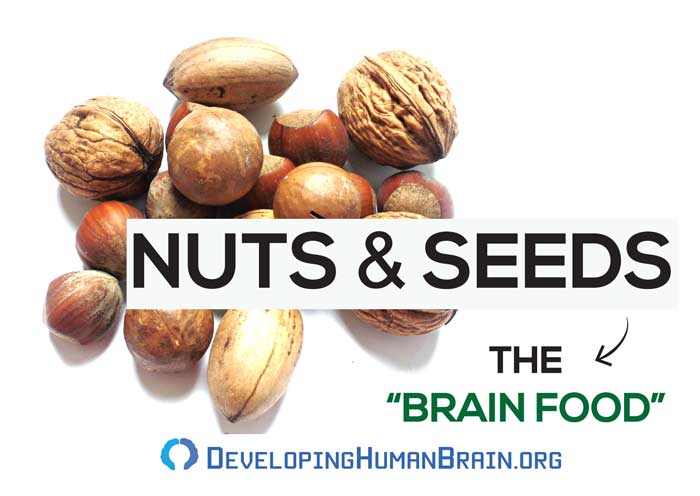nuts and seeds for brain