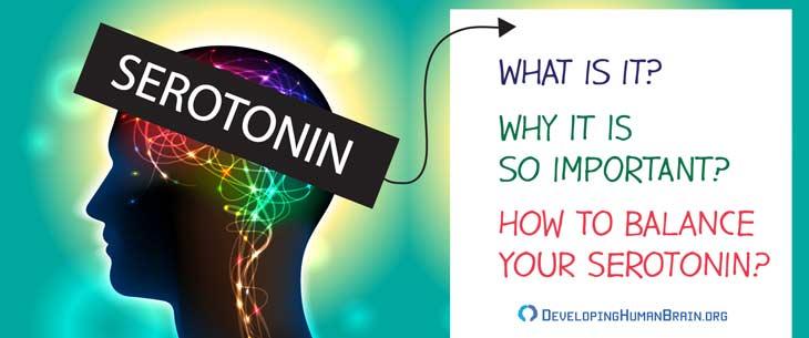 what does serotonin do