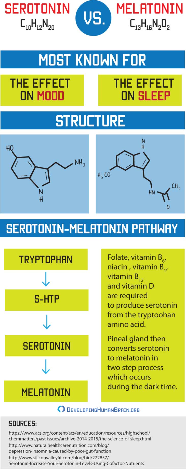 The Mystery of Serotonin: Can It Really Make You Happy?