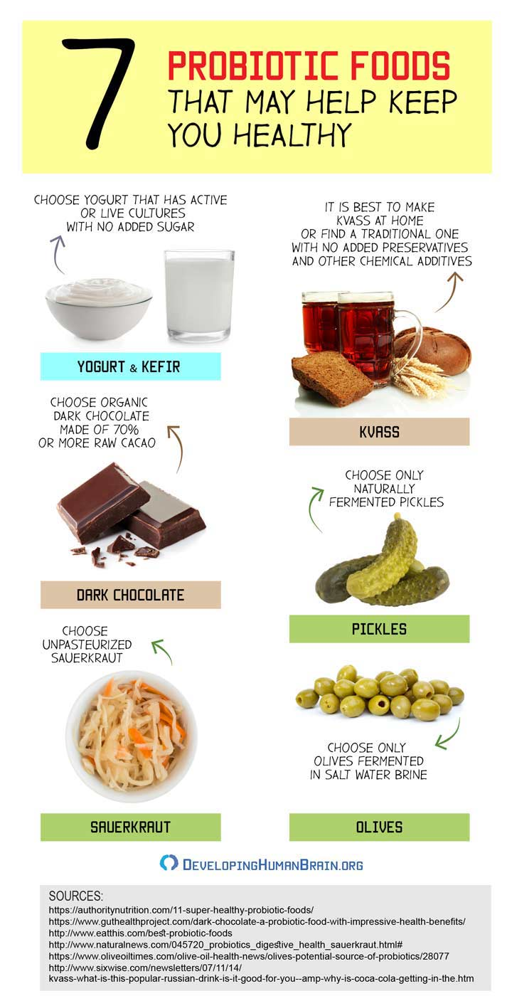 probiotic foods for brain fog infographic