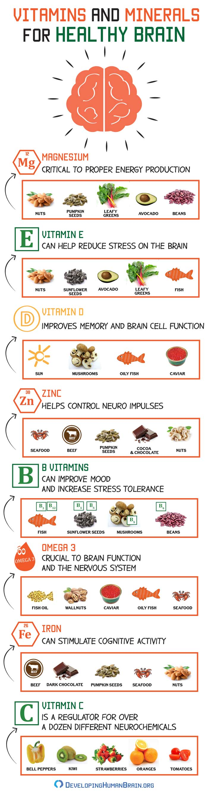 vitamins and minerals for brain infographic