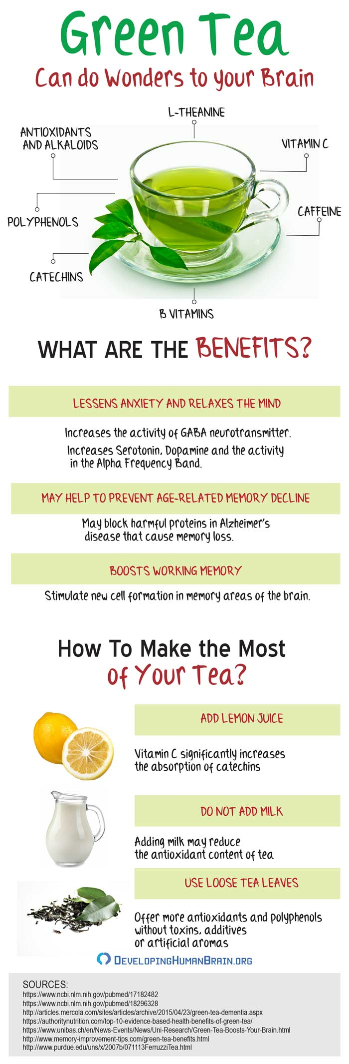 green tea brain benefits infographic