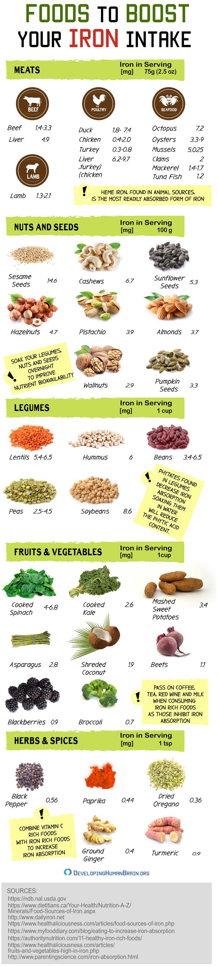 iron rich foods infographic