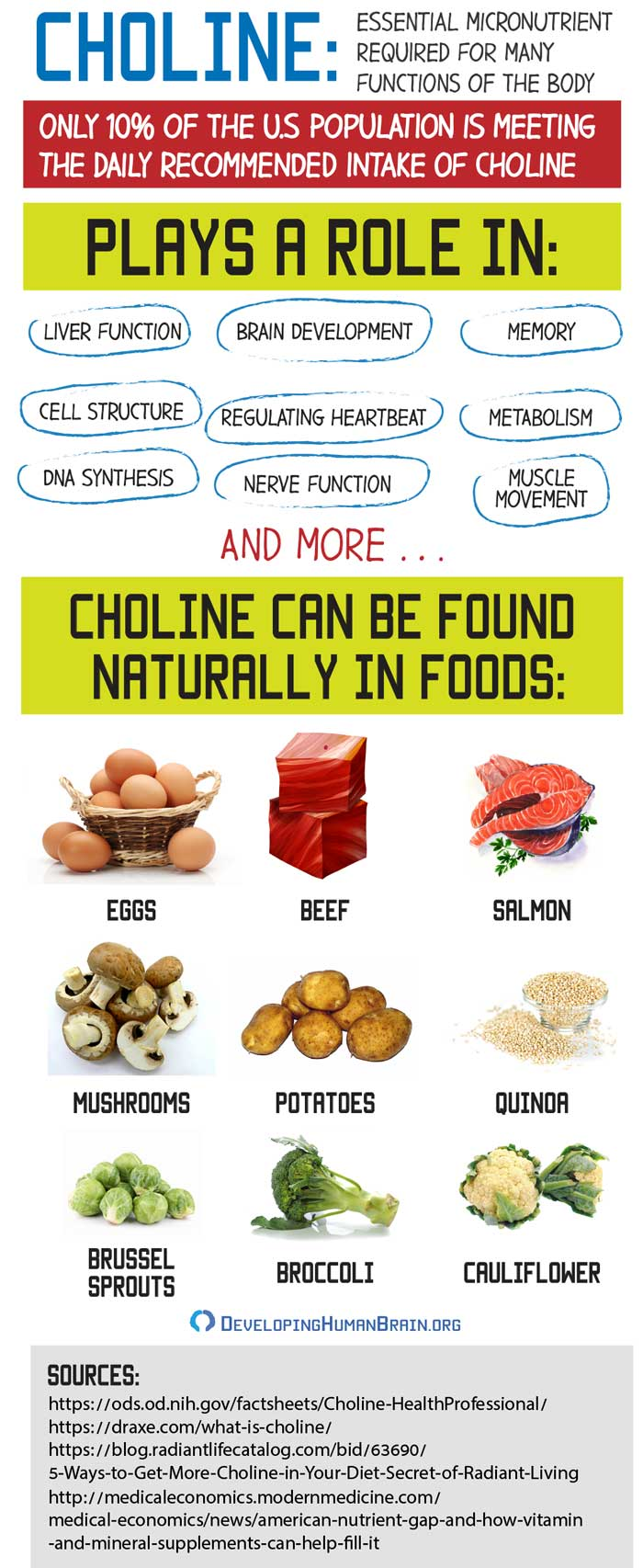 choline foods infographic