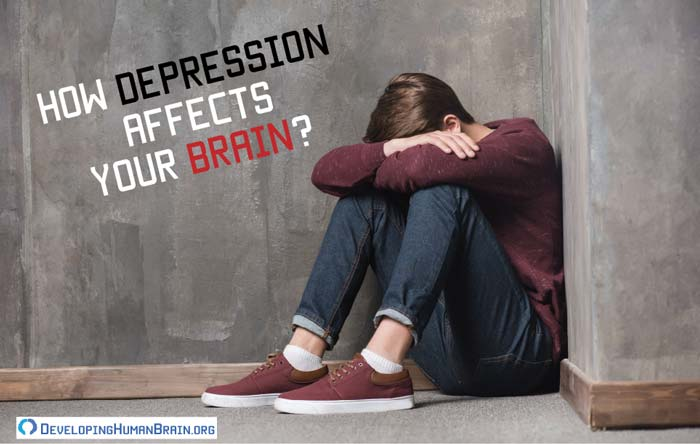 how depression affects the brain