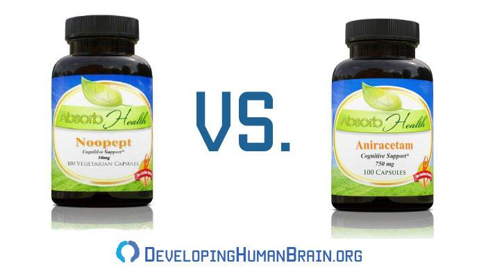 noopept vs aniracetam