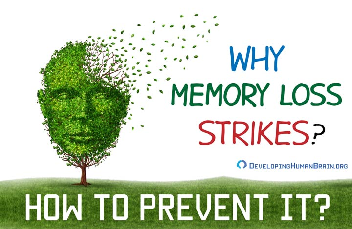 why memory loss happens