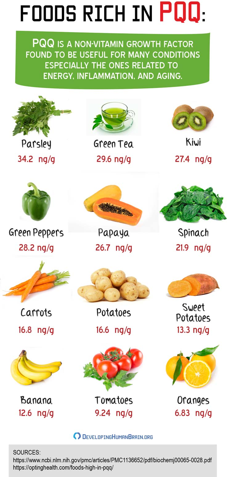 foods high in pqq infographic