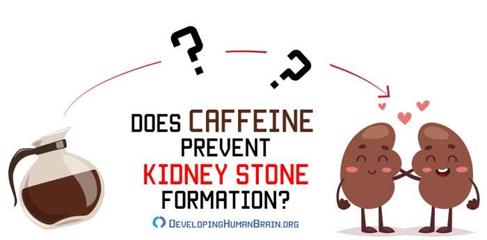 caffeine kidney stones