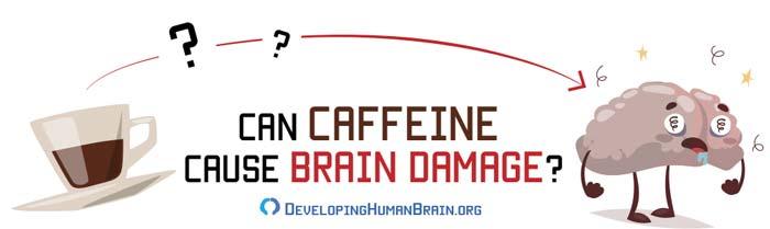 caffeine brain damage
