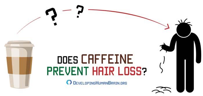 caffeine and hair loss