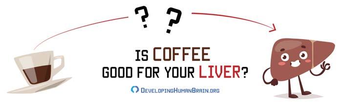 caffeine sensitivity liver