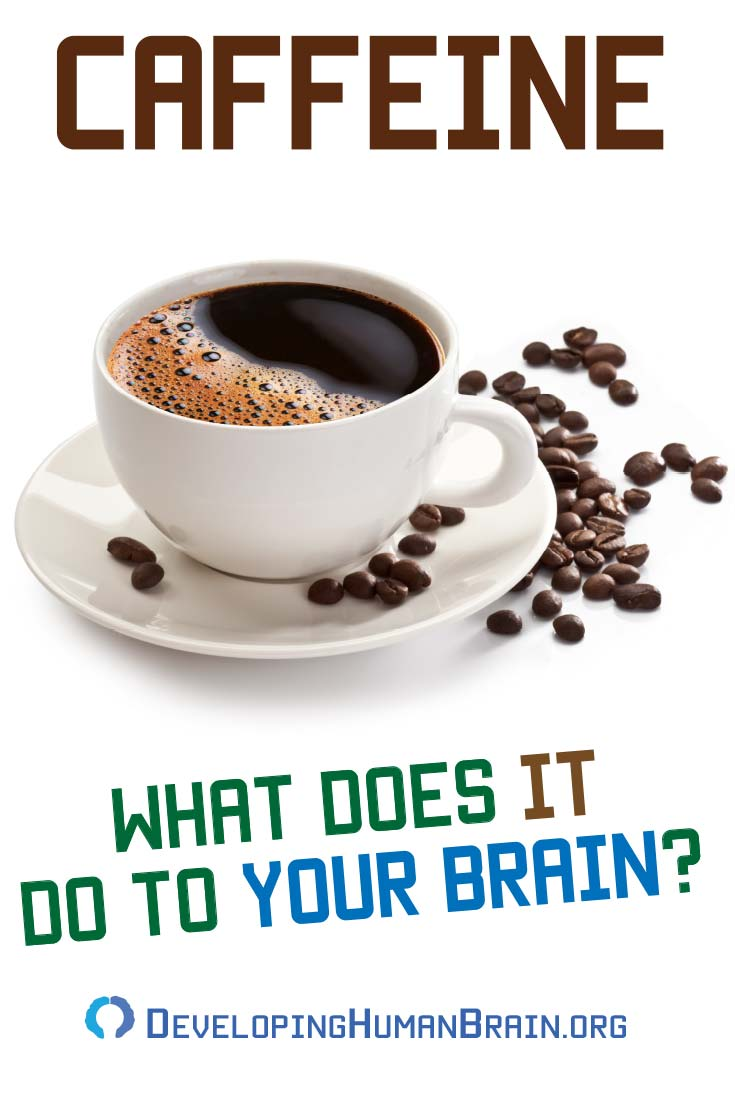 Surprising Effects of Caffeine on the Brain and Nervous System