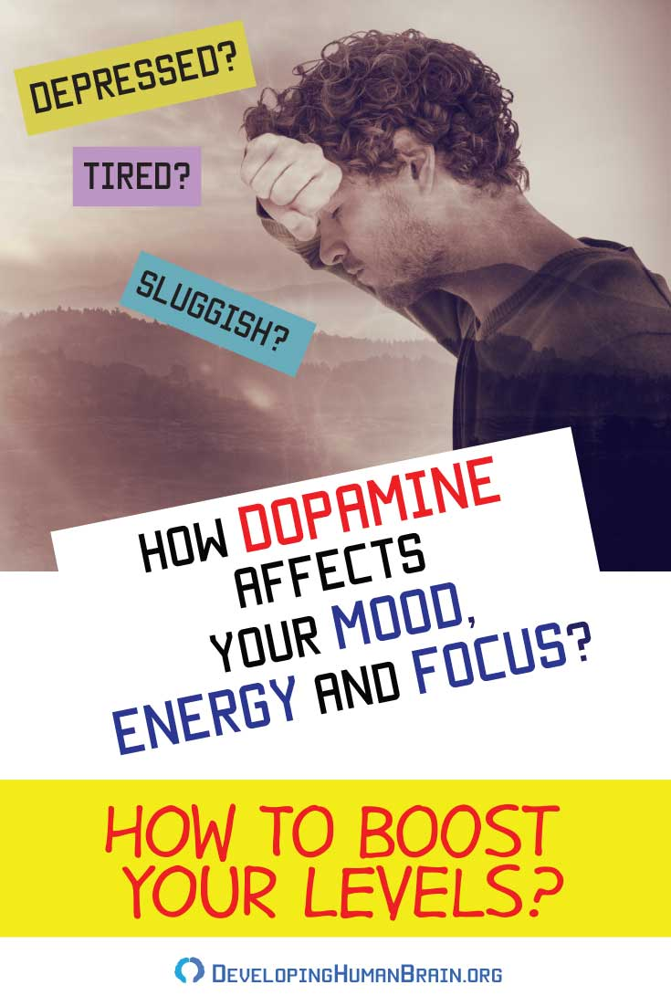 What is dopamine and why is it so important? What does it control? How it affects learning, mood, memory, sleep, appetite? How to increase dopamine levels naturally? Find all the answers and much more in our revealing article.