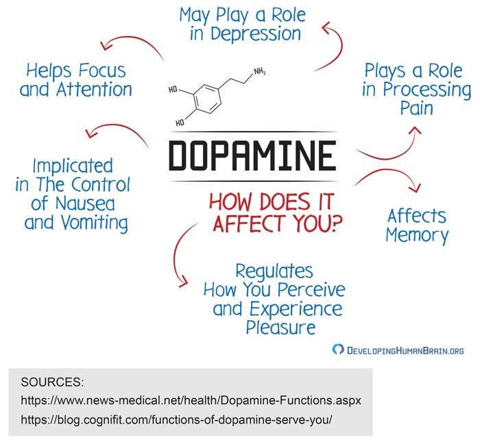 dopamine effects