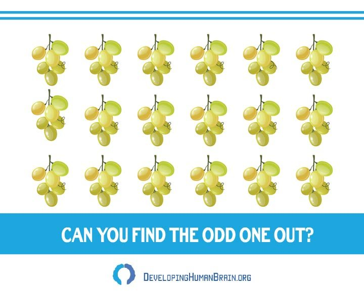 find the odd one out grapes