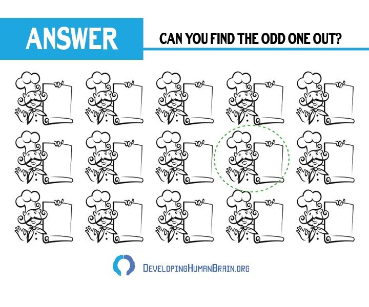 find the odd one out cook answer
