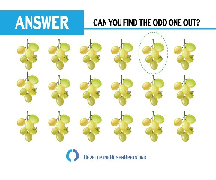 find the odd one out grapes answer
